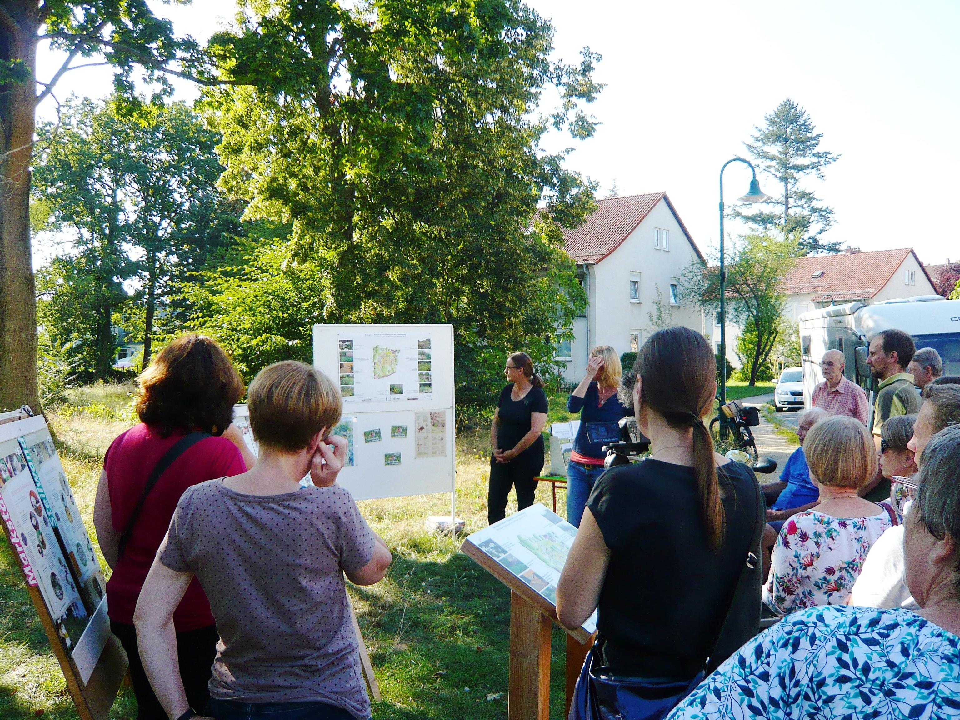 Stadtgrün konkret: Bericht zum Spaziergang über die künftige Naturerlebnisfläche Oppenheimer Straße