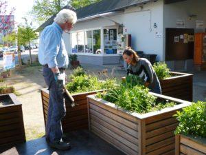 Quartierplatz: Toller Arbeitseinsatz lässt unsere Hochbeete wieder erstrahlen – Pflanzaktion am Wochenende