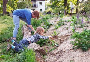 Biotop Oppenheimer Straße: Im gemeinschaftlichen Pflegeeinsatz…
