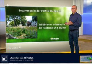 Read more about the article Biotop: GENAU-Umweltlotterie prämiert unsere Arbeit mit 5000,- Euro + Bericht im Hessenfernsehen!