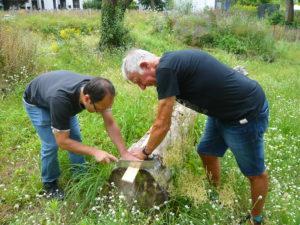 Read more about the article Biotop und Quartierladen: Kleiner Arbeitseinsatz bringt unsere Projekte einen großen Schritt weiter…
