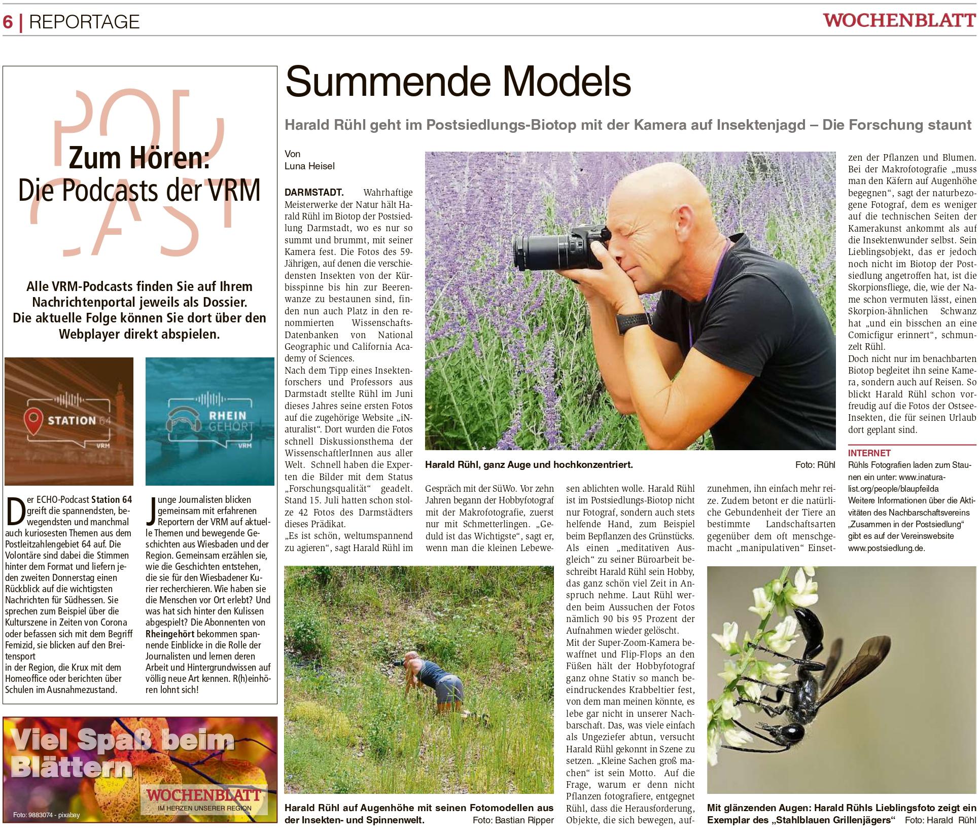 You are currently viewing Biotop: Sehr schöner Artikel im Südhessen Wochenblatt zu unseren Forschungsaktivitäten